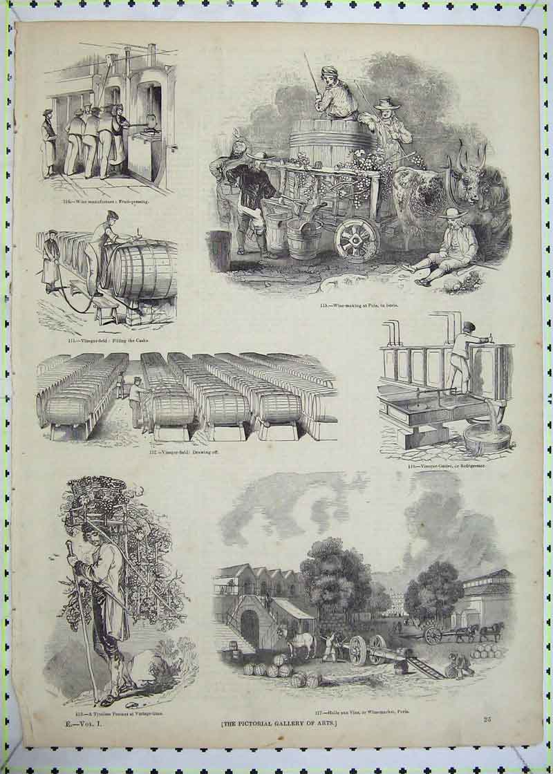 Print Wine Fruit Picking Pola Vinegar Field Market Paris Man 706B403 Old Original