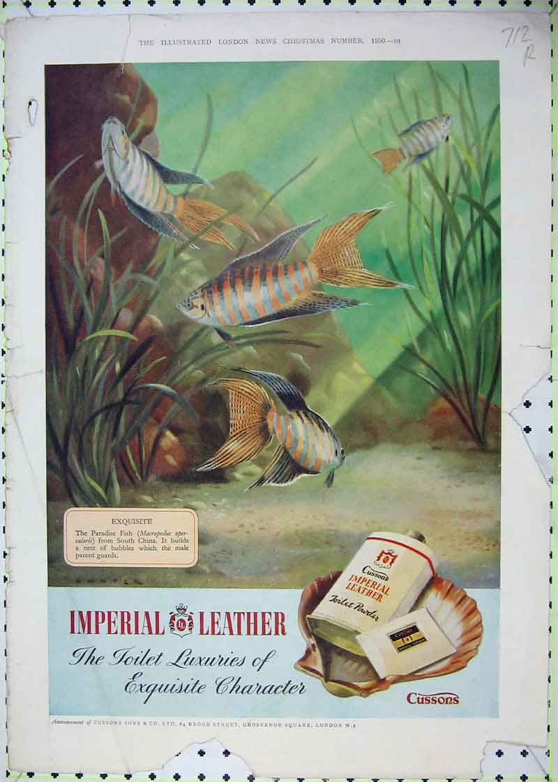 Print 1950 Imperial Leather Fish Toilet Powder Scotch Whisky 712Rb403 Old Original