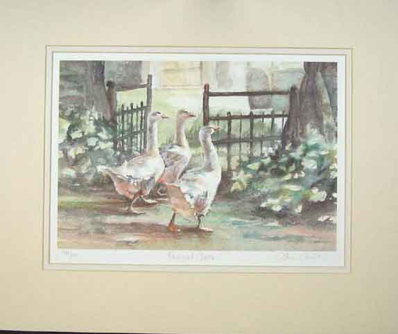 Print Water Colour Farmyard Geese Country Fence Animals 115C202 Old Original
