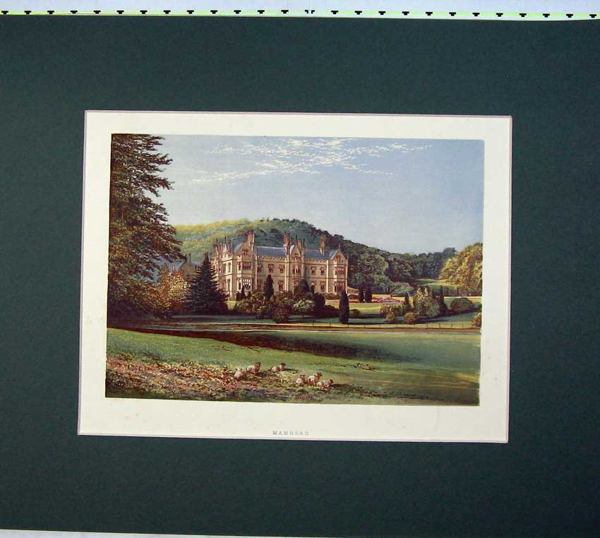 Print Colour Mamhead Mansion House Country Garden 501C233 Old Original