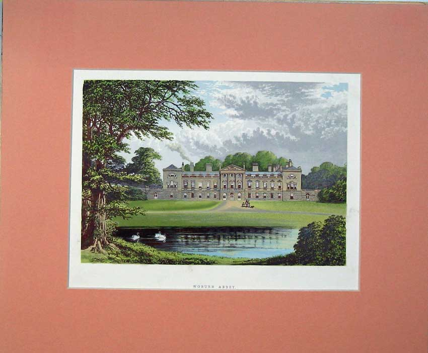 Print View Woodburn Abbey Bedfordshire 1930 Garden River Swan 411C234 Old Original