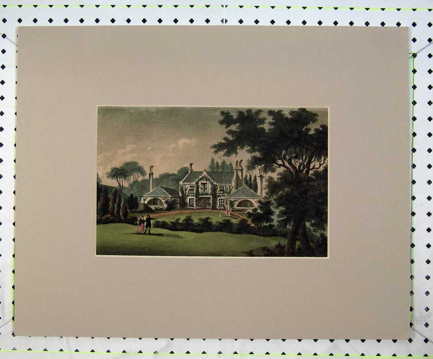 Print Country View Statley Home Building Garden Trees Hedges 216C236 Old Original