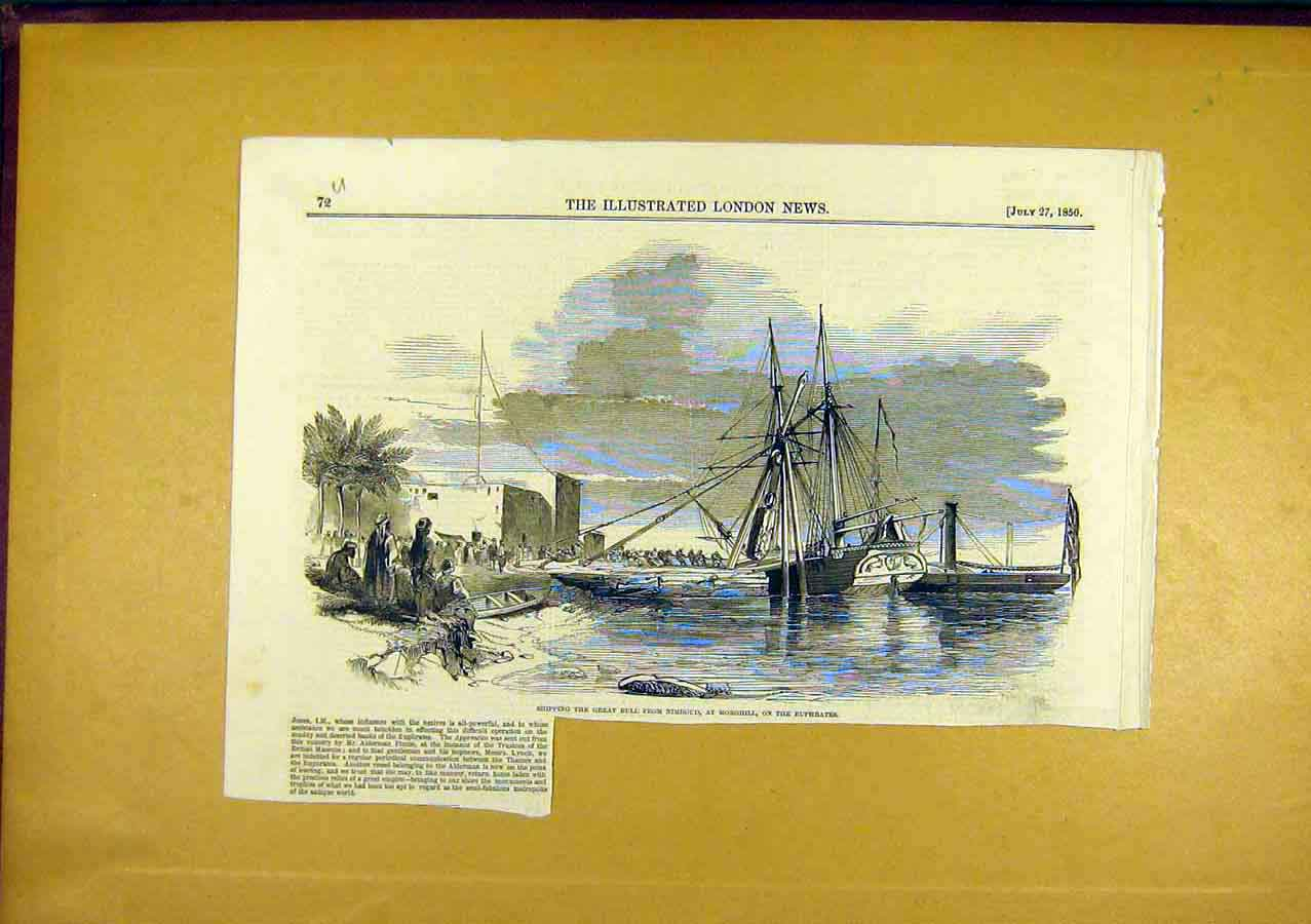 Print Bull Nimroud Morghill Euphrates 1850 72Uccc0 Old Original