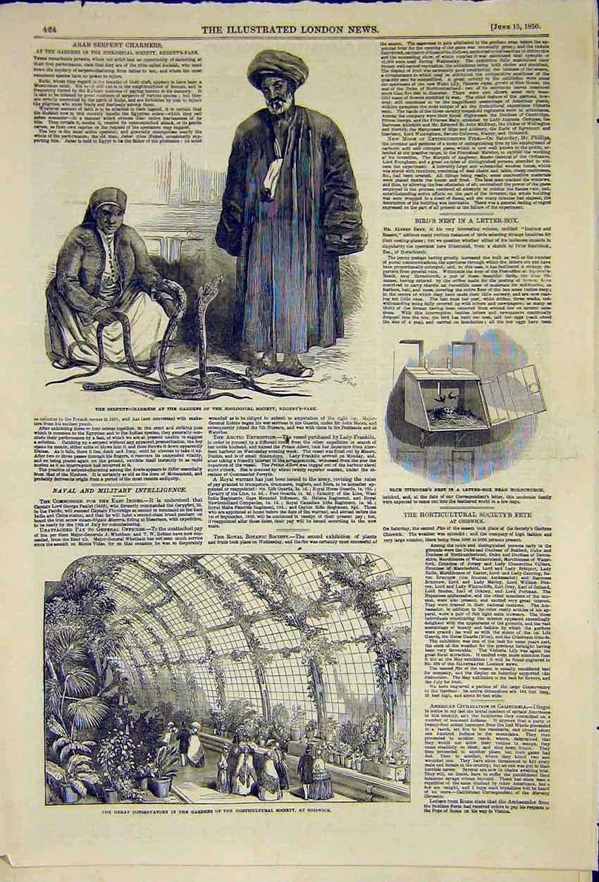 Print Snake Charmers Zoological Horticultural Society 1850 24Ccc0 Old Original