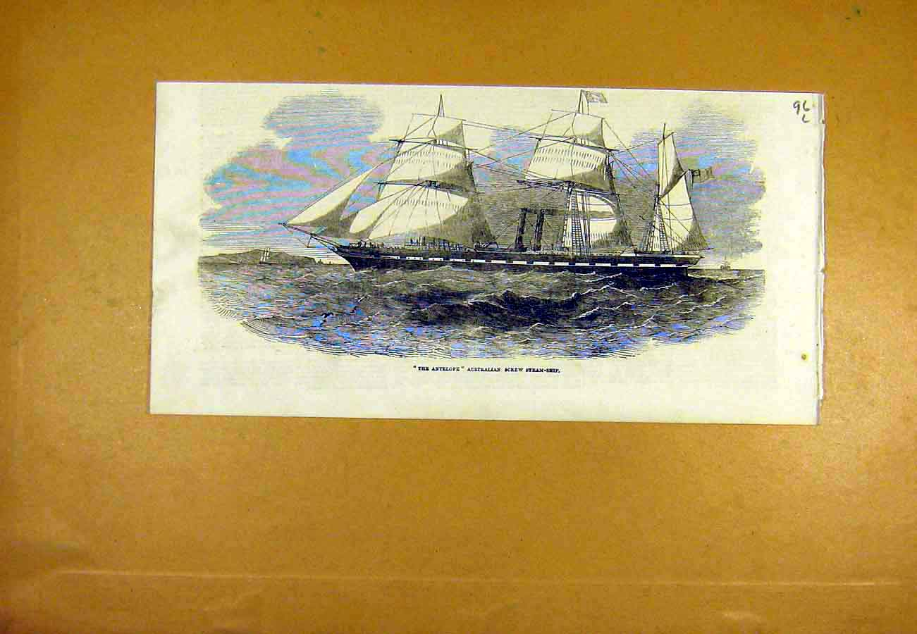 Print Antelope Australian Screw Steam Ship 1853 96Lccc0 Old Original