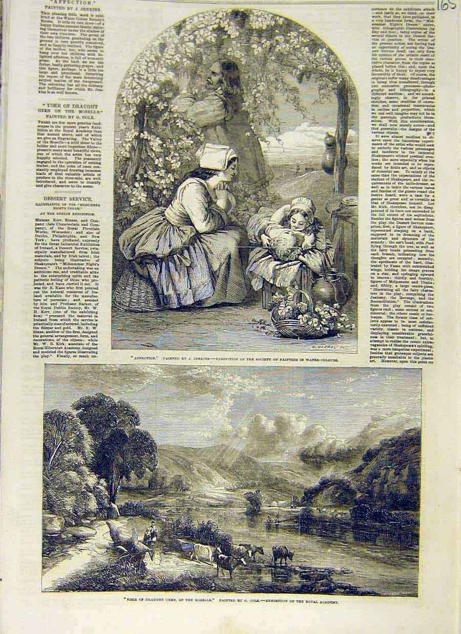Print Affection Jenkins Yoke Draught Oxen Moselle Cole 1853 65Ccc0 Old Original