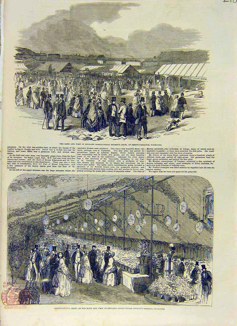 Print Plymouth Agricultural Show Horticultural Society 1853 18Ccc0 Old Original