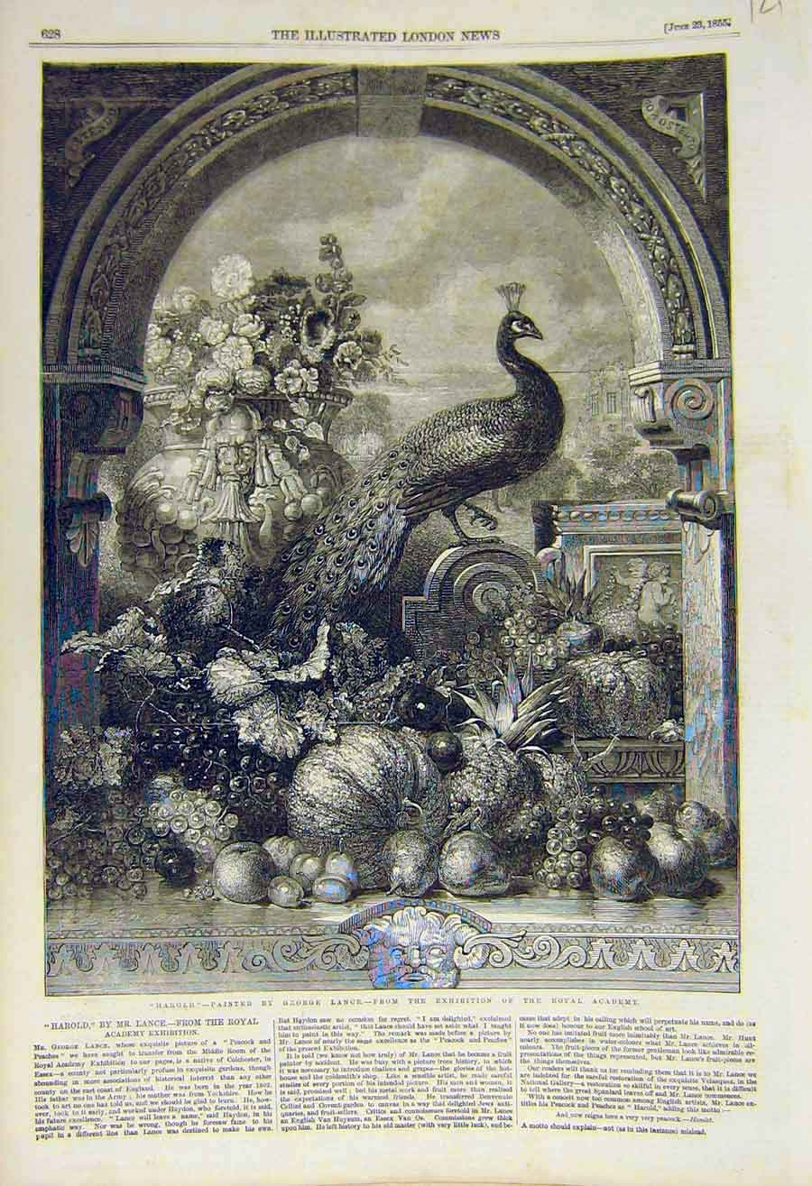 Print 1855 HarLance Royal Academy Fine Art 21Ccc0 Old Original