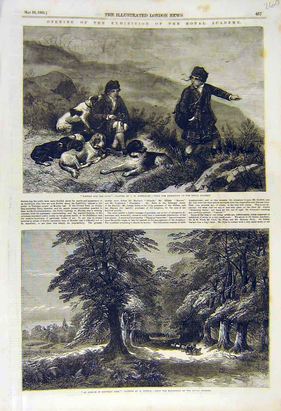 Print 1855 Waiting-Gun Shooting Bottomley Hatfield Jutsum Art 60Ccc0 Old Original
