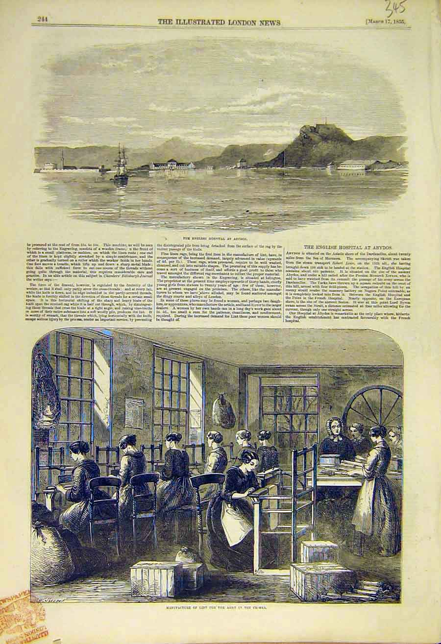 Print English Hospital Abydos Lint Factory Army Crimea 1855 45Ccc0 Old Original