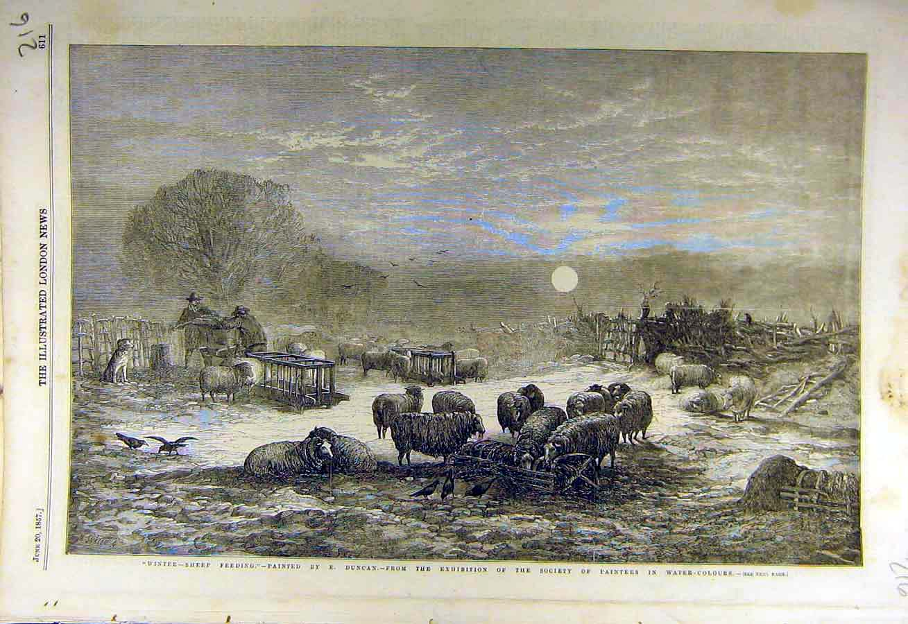 Print 1857 Winter-Sheep Duncan Fine Art Water-Colour 16Ccc0 Old Original