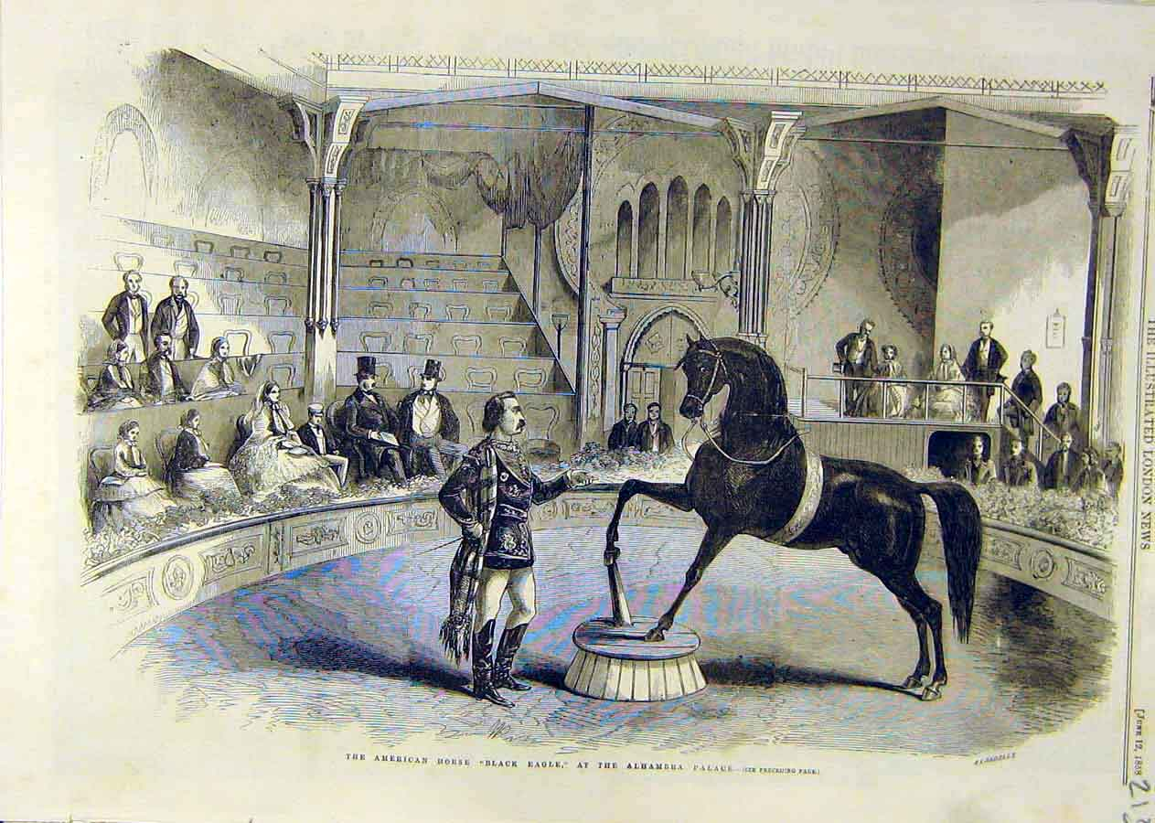 Print American Horse Balck-Eagle Alhambra Palace 1858 13Ccc0 Old Original