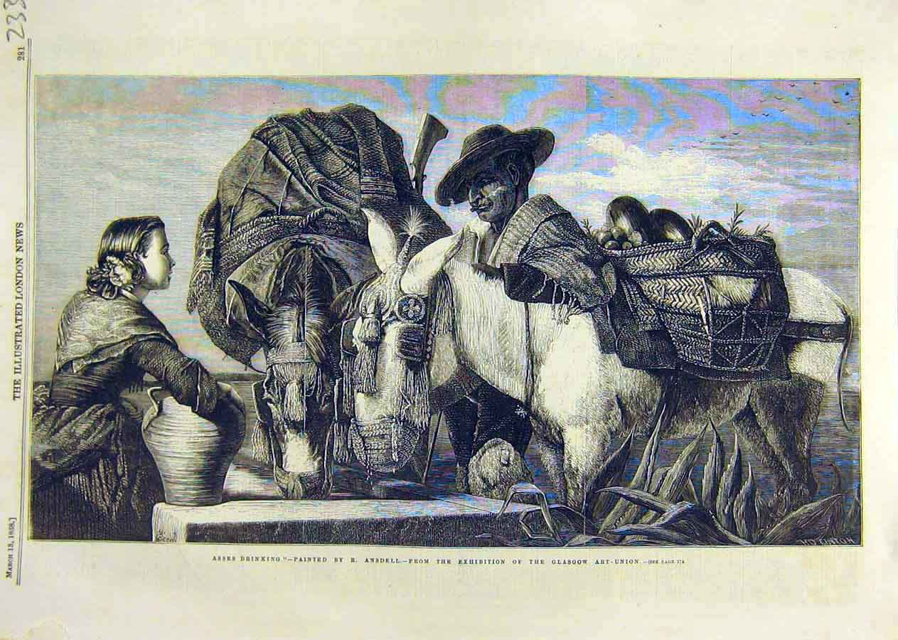 Print Asses Drinking Ansdell Glasgow Art-Union Fine Art 1858 33Ccc0 Old Original