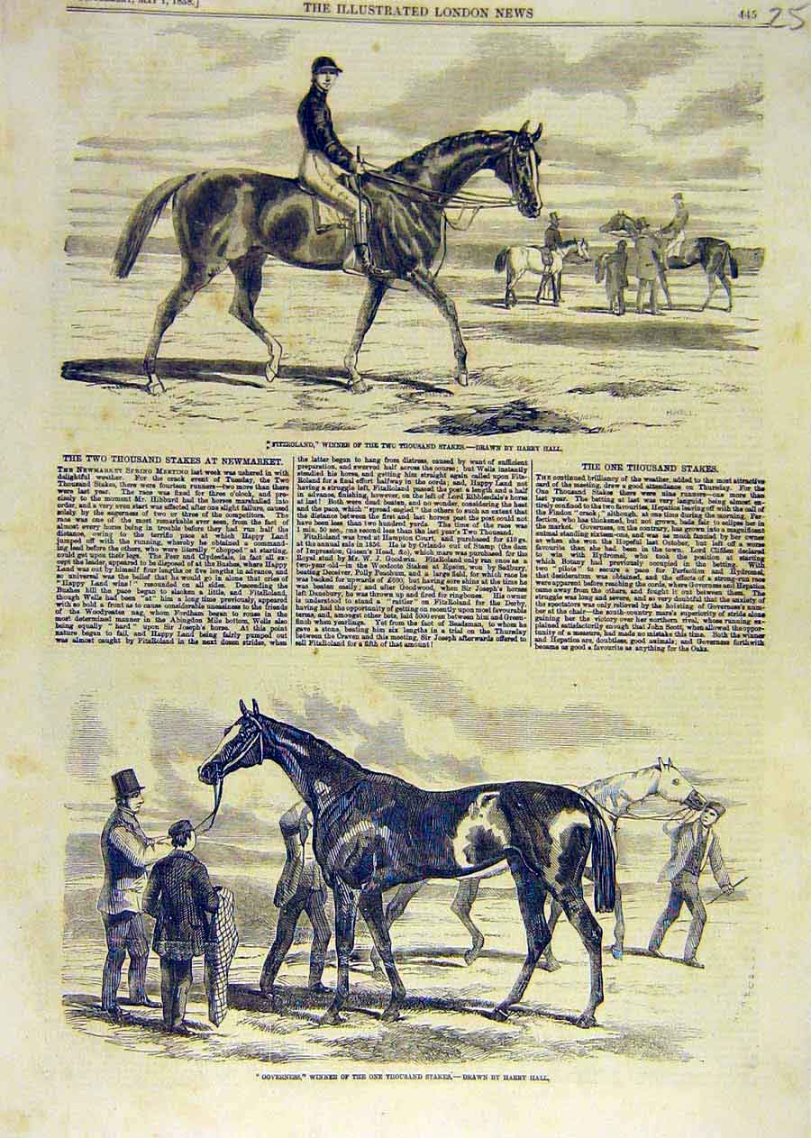 Print Fitzroland Race-Horse Harry-Hall Governess 1858 51Ccc0 Old Original