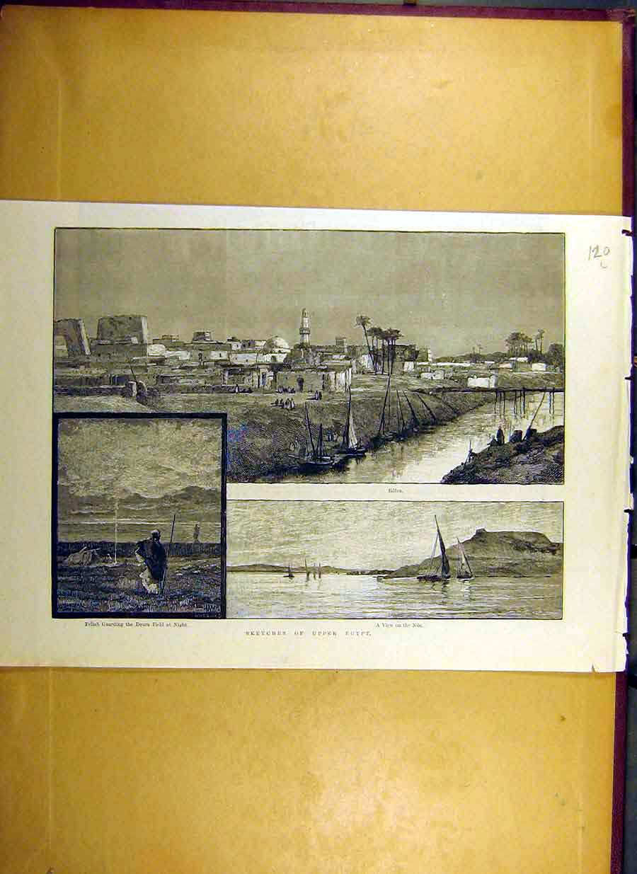 Print 1884 Sketches Upper-Egypt Doura-Field Edfou Nile Africa 20Lccc0 Old Original
