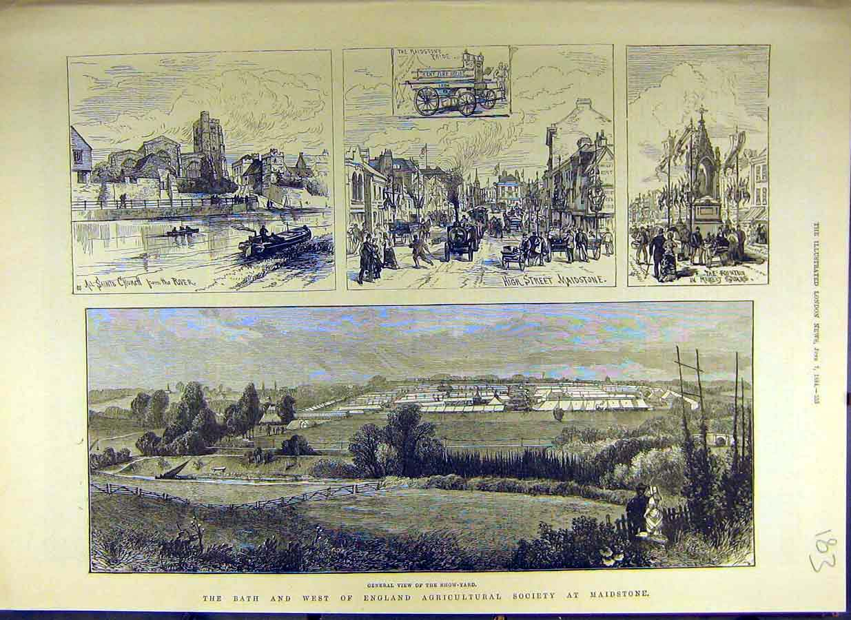 Print *0009 1884 Bath West-England Agricultural Society Maidstone 83Ccc0 Old Original