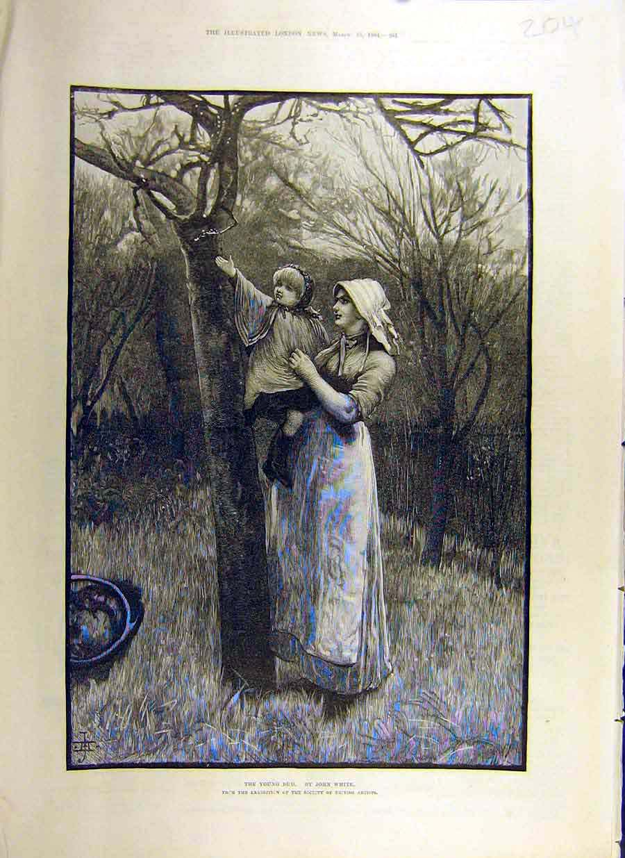 Print 1884 Young-Bud White Art Orchard Lady Child 04Ccc0 Old Original
