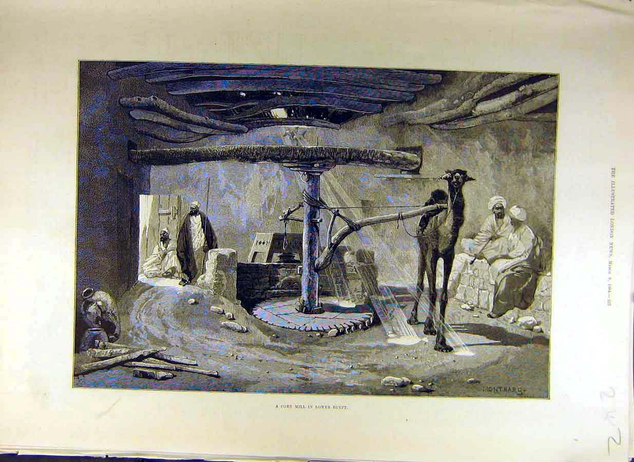 Print 1884 Corn Mill Lower-Egypt Gyptian Camel-Wheel 42Ccc0 Old Original