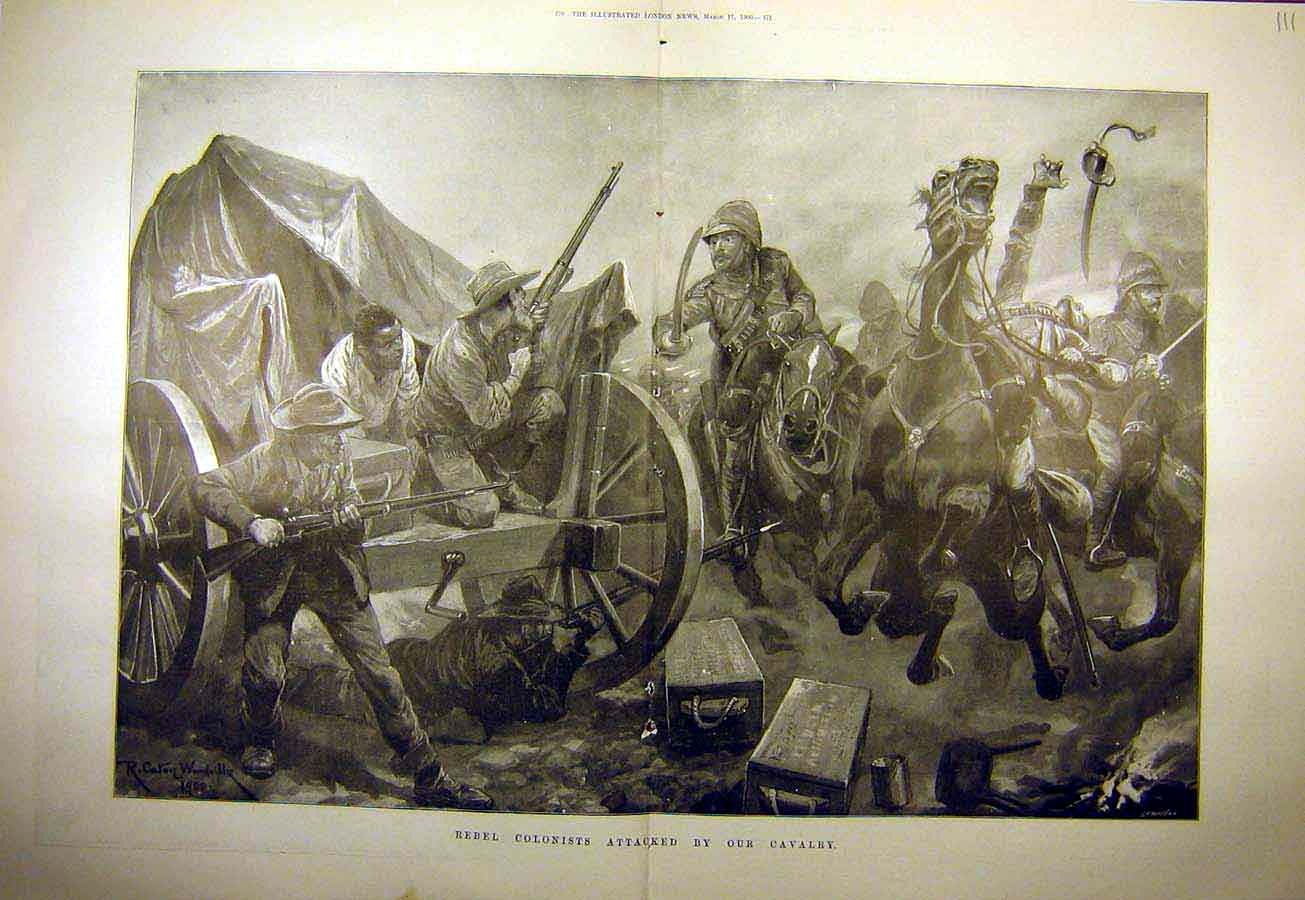 Print 1900 Rebel Colonists Cavalry Boer War Africa 11Tccc0 Old Original