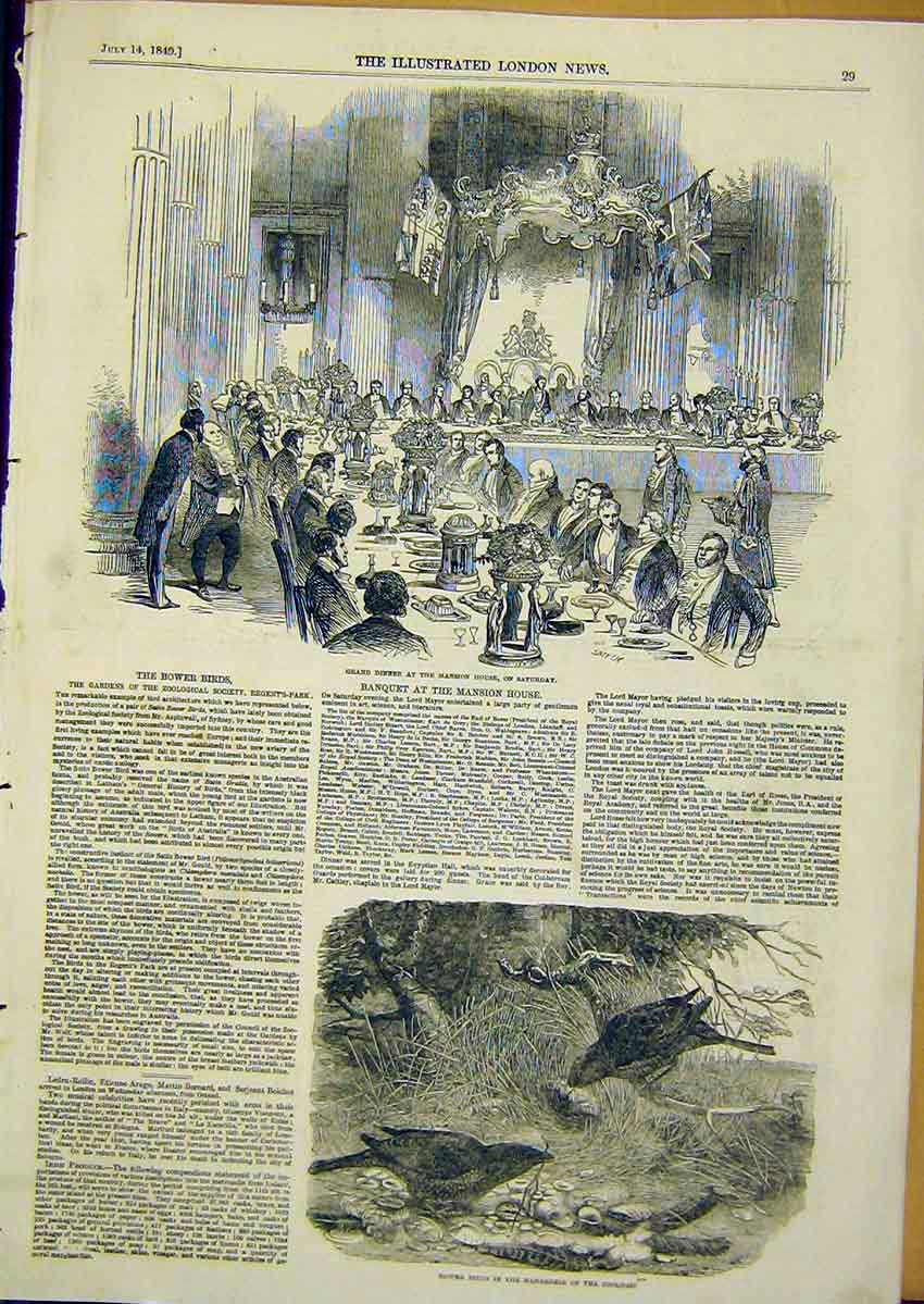 Print Banquet Mansion House Bower Birds 1849 29Ccc1 Old Original