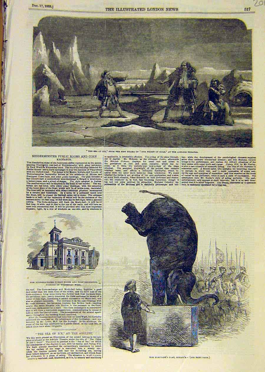 Print 1853 Sea-Ice Drama Scene Theatre Elephant Astley'S 01Ccc1 Old Original