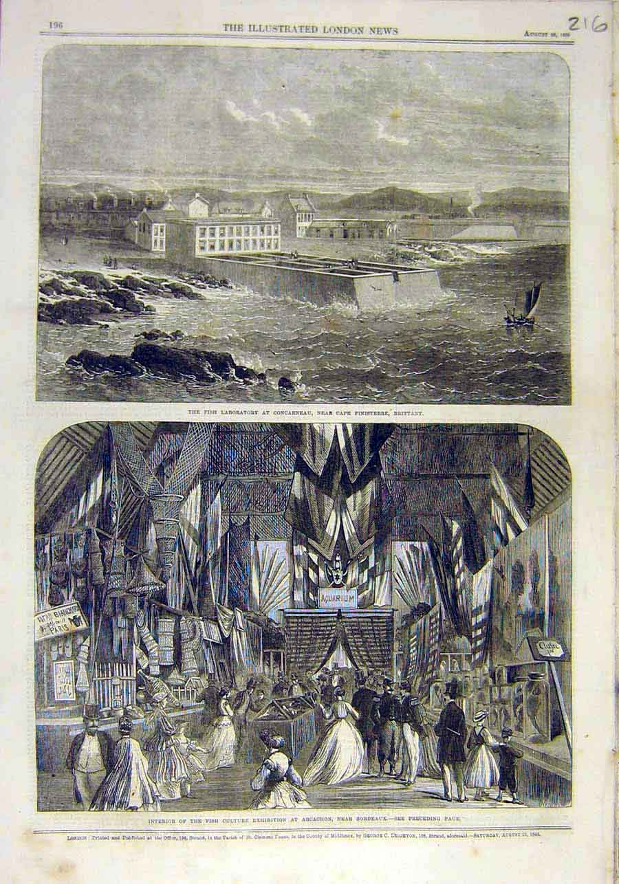 Print Fish Laboratory Concarneau Brittany Exhibition 1866 16Ccc1 Old Original