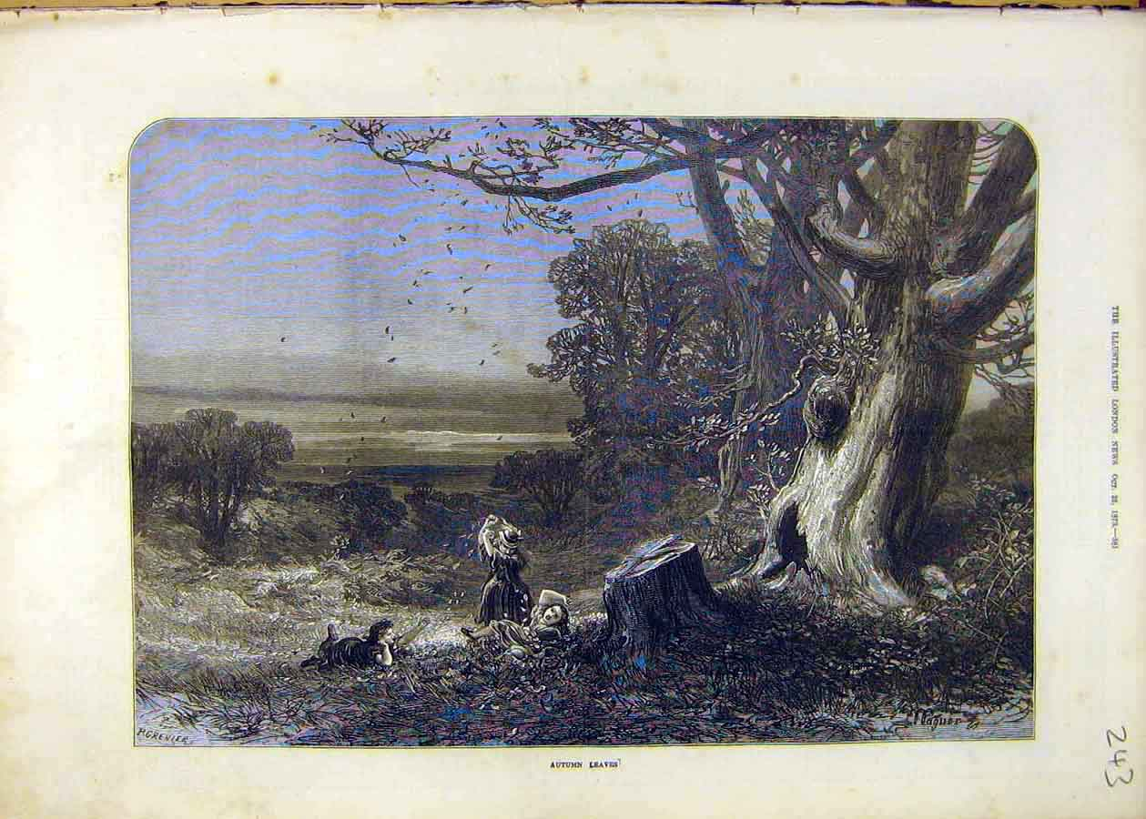 Print Autumn Leaves Trees Forest Woods Children 1873 43Ccc1 Old Original