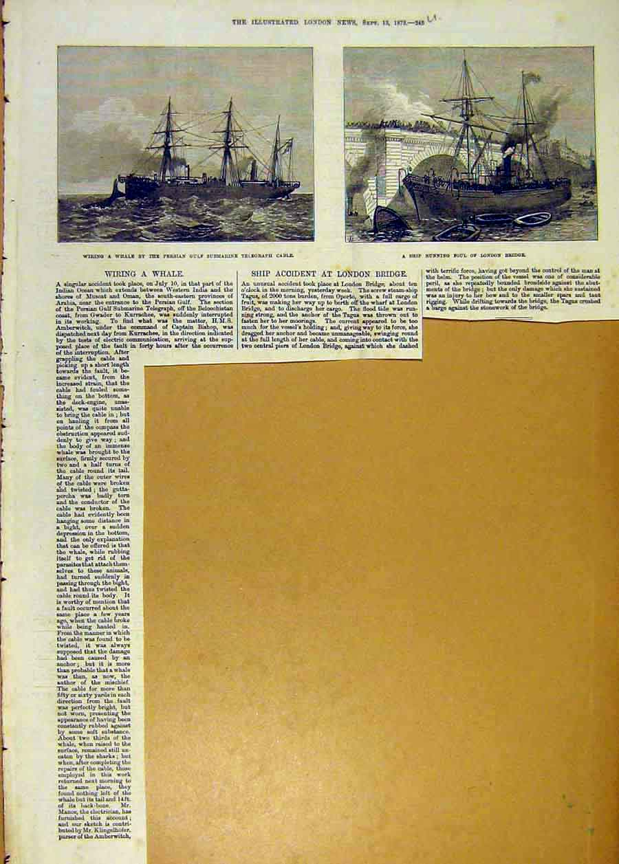 Print Whale Telegraph Cable Ship London Bridge 1873 45Uccc1 Old Original