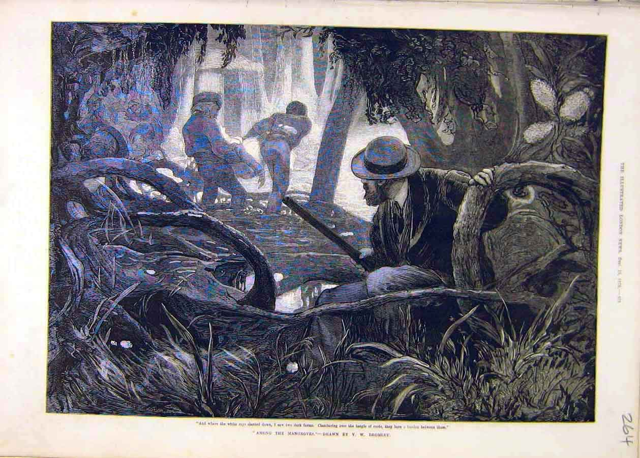 Print Among-Mangroves Bromley People Roots 1873 64Ccc1 Old Original