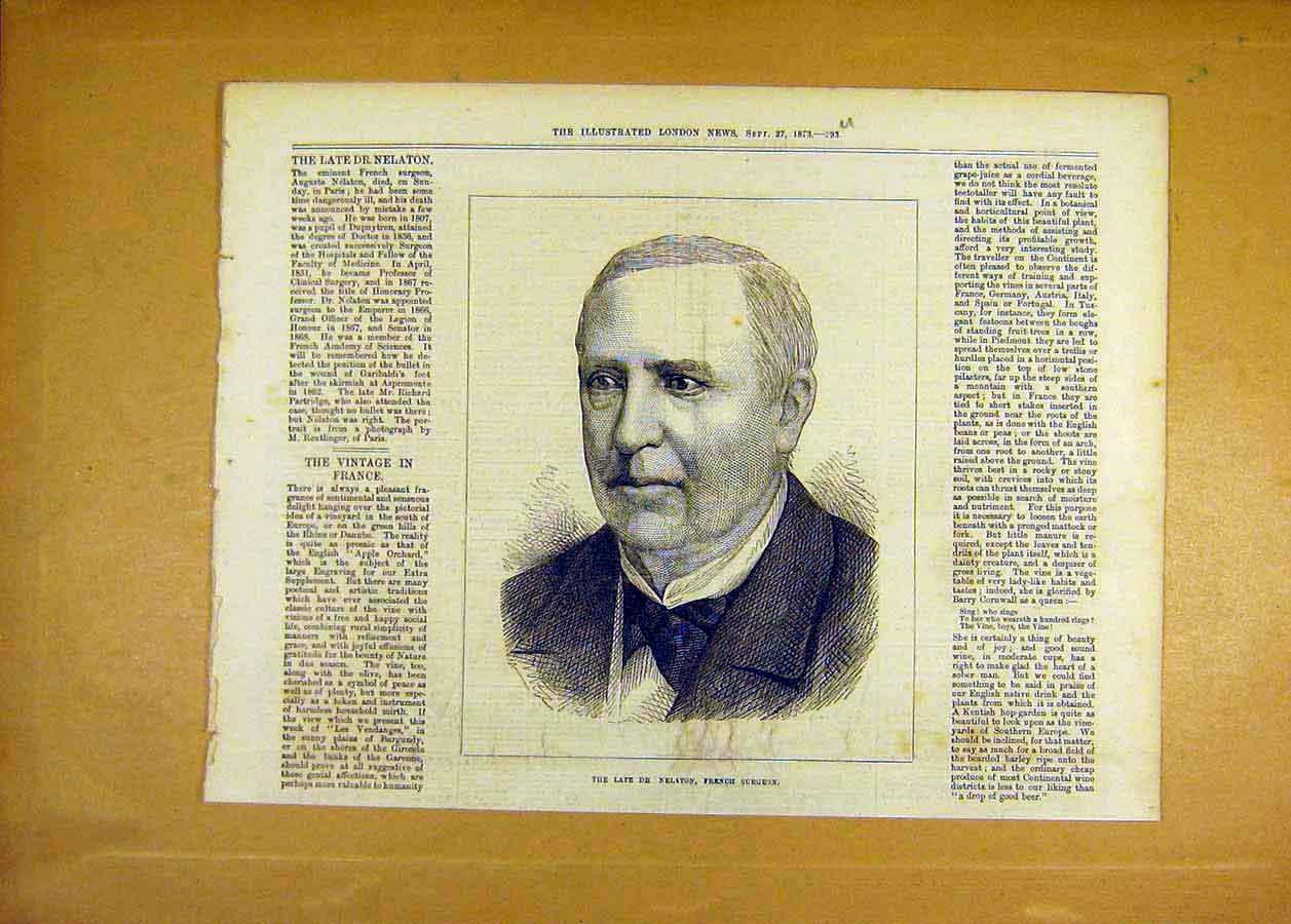Print Doctor Nelaton French Surgeon Portrait 1873 93Uccc1 Old Original