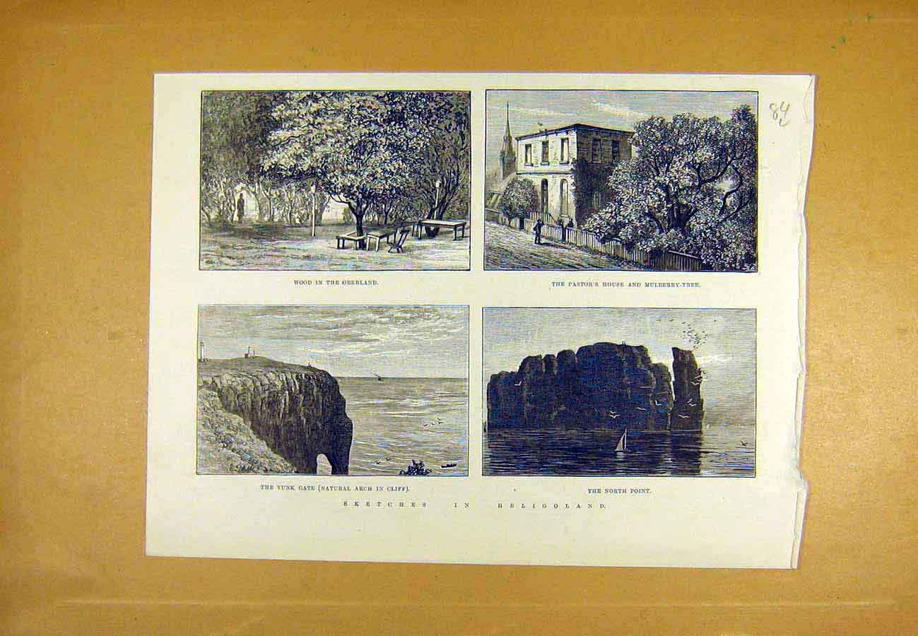 Print Heligoland Sketches Oberland Mulberry Pastor Yunk 1890 84Lccc1 Old Original
