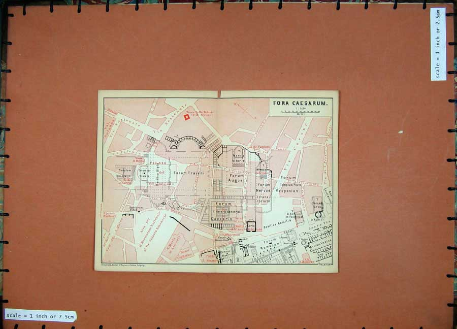 Print 1893 Colour Map Plan For A Caesarum Italy Augusti Forum 115D101 Old Original