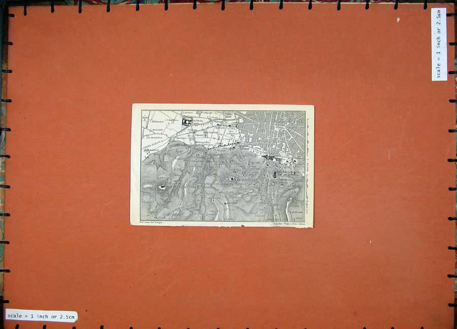 Print 1909 Map Italy Street Plan Certosa Osservanza 259D104 Old Original