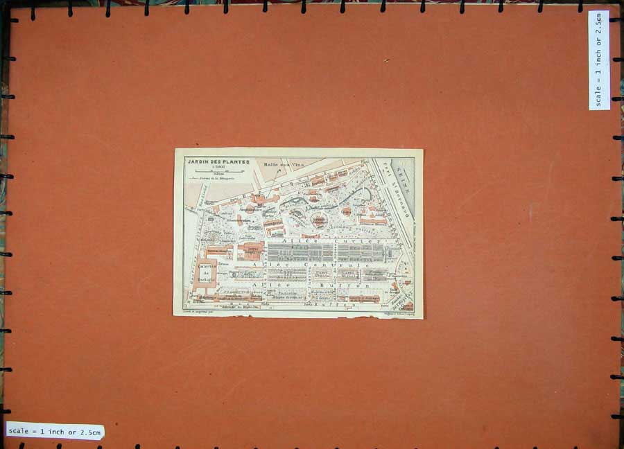 Print 1924 Colour Map France Plan Jardin Des Plantes Seine 142D134 Old Original
