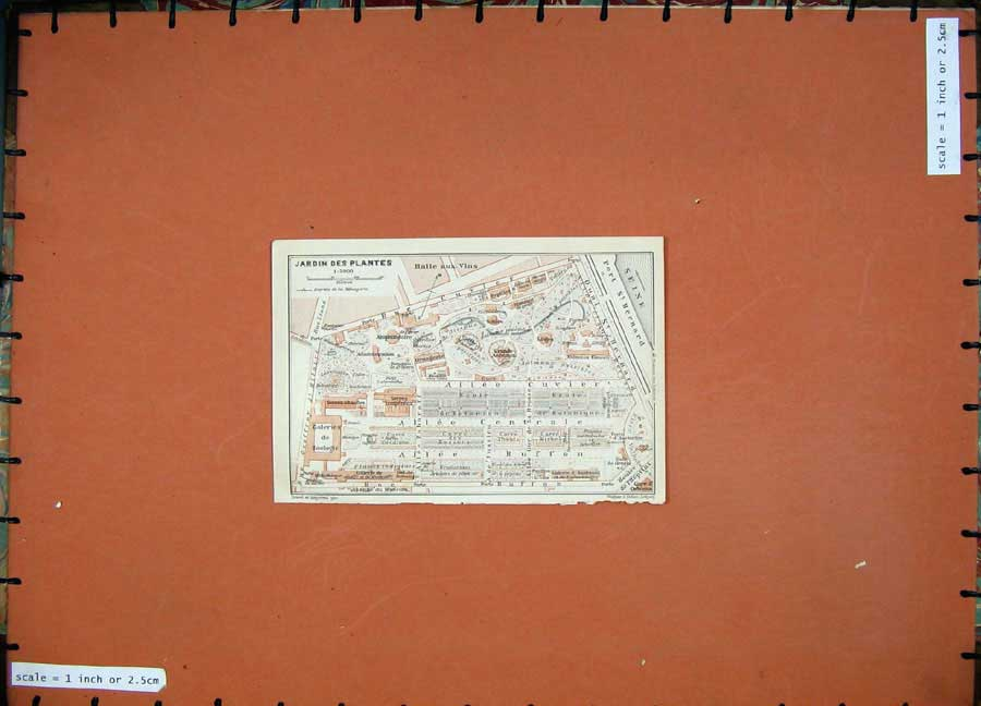 Print 1924 Colour Map France Street Plan Jardin Des Plantes 105D145 Old Original