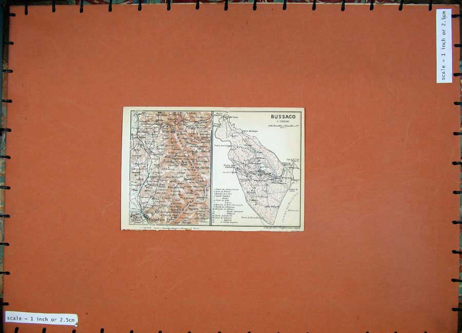 Print 1913 Colour Map Spain Plan Bussaco Coimbea Port Sulla 138D156 Old Original
