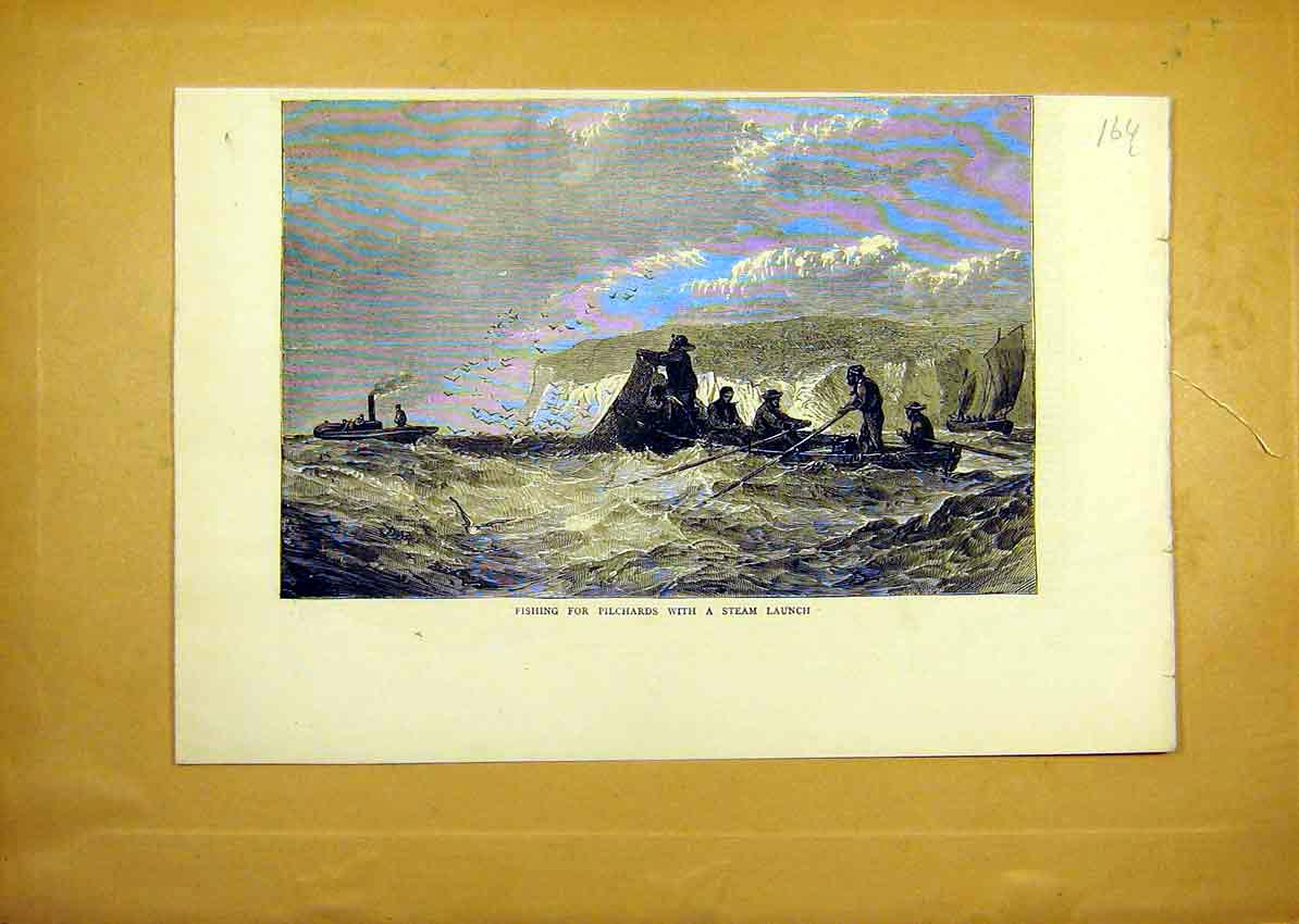 Print Fishing Pilchards Steam Launch Boat Sea Dover 1871 64Lddd0 Old Original
