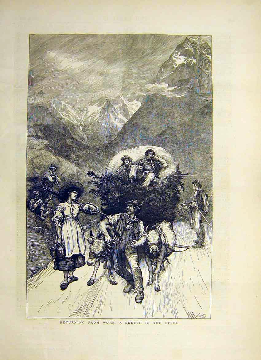 Print Return Work Fields Tyrol Cart Wagon Bull Hay 1871 90Ddd0 Old Original