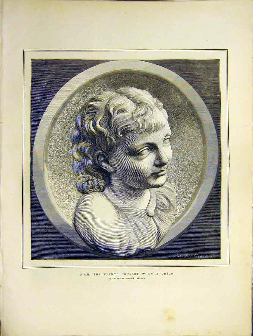 Print Portrait Hrh Prince Consort Child C A Fellows 1871 62Ddd0 Old Original