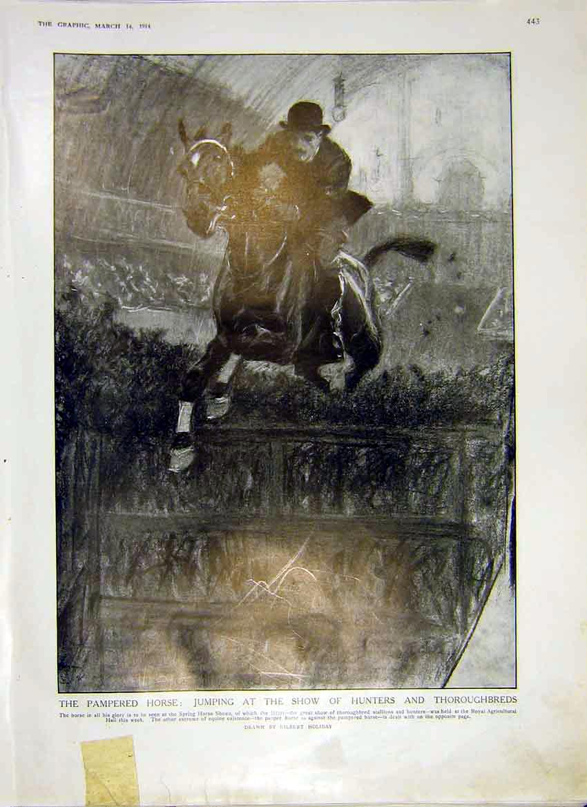 Print Show Jumping Hunters Thoroughbreds Horse 1914 43Ddd0 Old Original