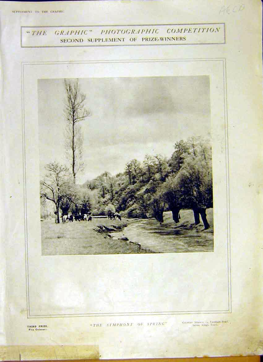 Print Photo Competition Prize Winners 1914 Pictures 02Addd0 Old Original