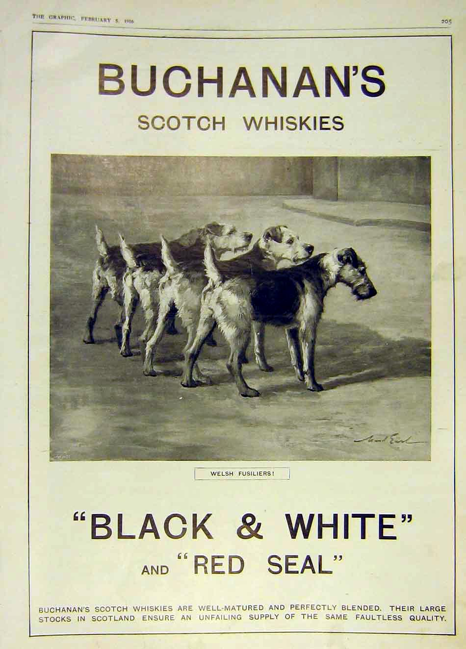 Print Scotch Whiskies Buchanan Welsh Fusiliers 1916 05Ddd0 Old Original