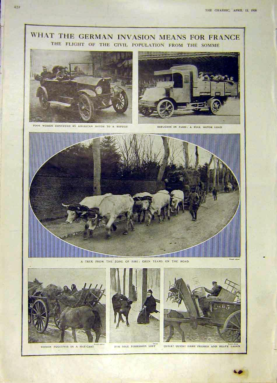 Print German Invasion France Refuge Cattle Women Ww1 1918 52Ddd0 Old Original
