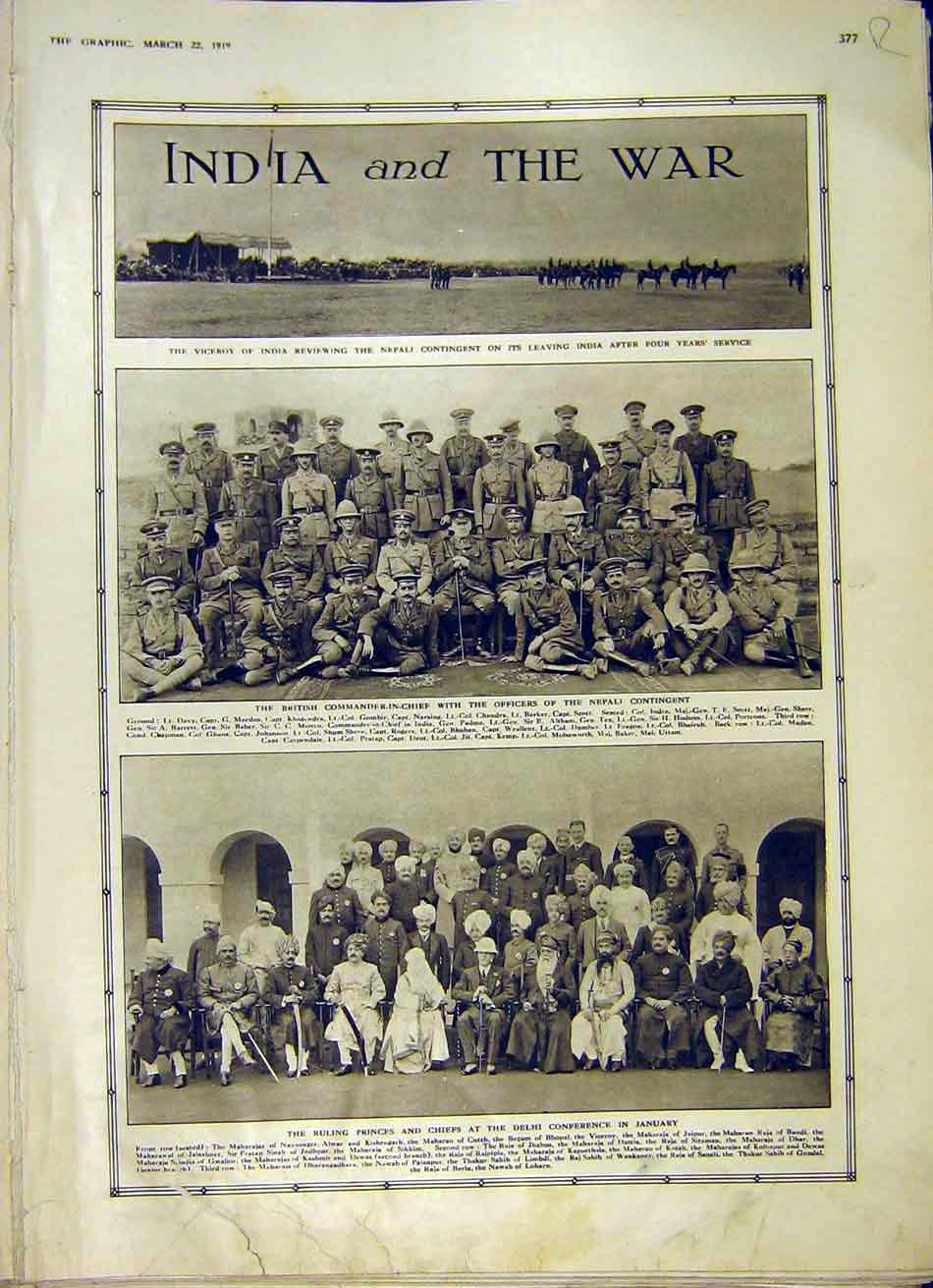 Print India War Viceroy Delhi Horse-Breeding Show 1919 77Rddd0 Old Original