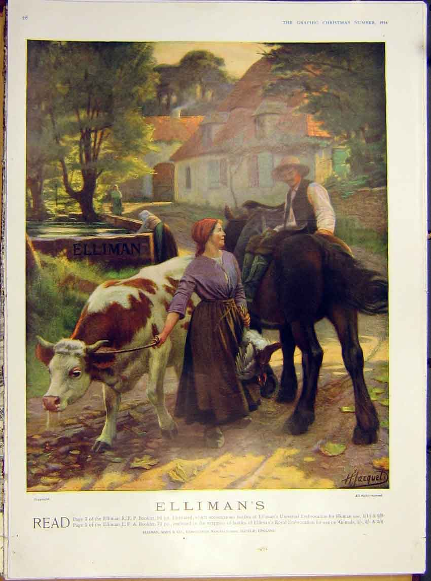 Print Advert Elliman'S Page 1 Booklet Bull Horse Shire 1914 26Ddd1 Old Original