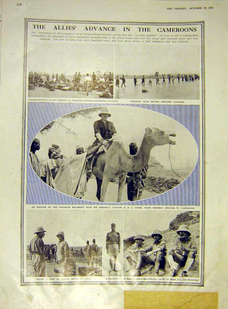 Print Cameroons Camel Africa Gaurua Officers List Honour 1915 36Rddd1 Old Original