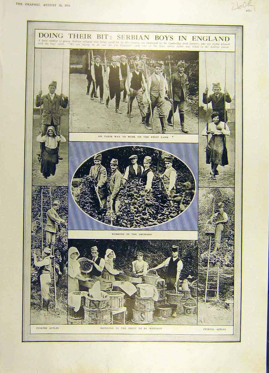Print 1916 Serbian Boys England War Ww1 Kelly Officers 60Rddd1 Old Original