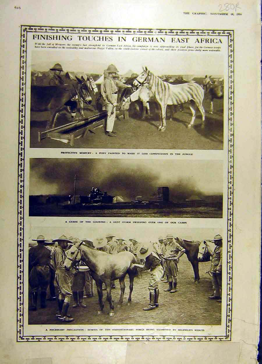 Print 1916 German-Africa Horses French Priest Religious Ww1 80Rddd1 Old Original