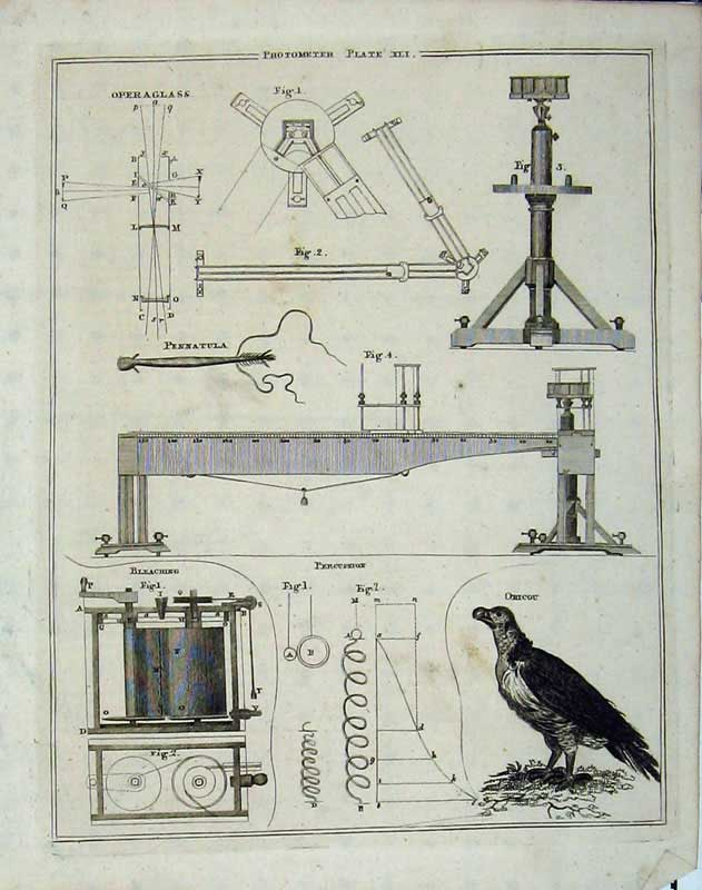 Print Encyclopaedia Britannica Photometer Machinery Birds 244E101 Old Original