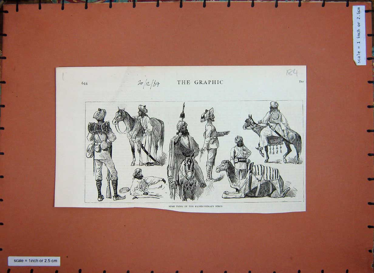 [Print 1884 Expeditionary Forces Soldiers War Horse Camel 184E178 Old Original]